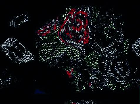 farbe_hk_black_autumn-fower.jpg