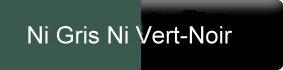 farbe_ni-gris-ni-vert-noir_gerbe.jpg
