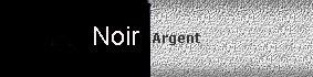 farbe_noir-argent.jpg