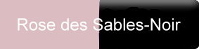 farbe_rose-des-sables-noir_gerbe.jpg